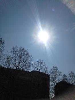 Look! Sunshine! Blue sky!