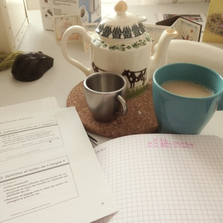 Holiday studying also requires copious amounts of tea. And it was a good excuse to use my new teapot, which I love!